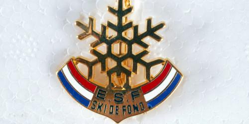 ESF BESSANS Flocon fond